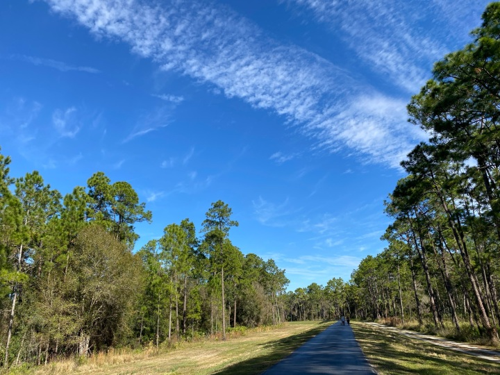 Exploring Tampa: Flatwoods Park
