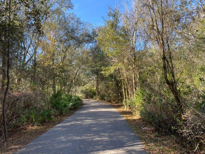 Exploring Tampa: New Tampa NaturePark