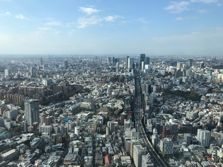 Views from atop Mori Tower