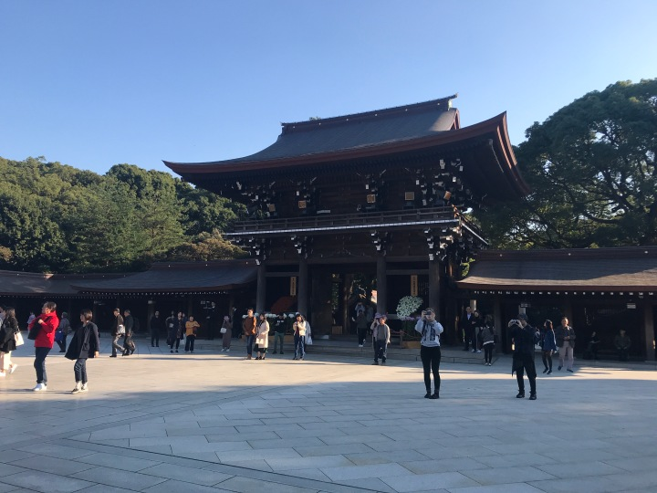 Exploring Meiji Shrine